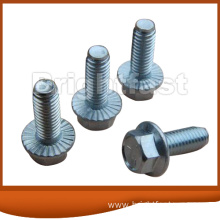 Customized for Flange Bolts Hex Flange Bolt supply to Antigua and Barbuda Importers